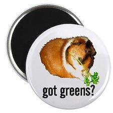 Got Greens Magnet