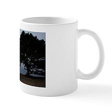 Tree at Natural Bridges Mug