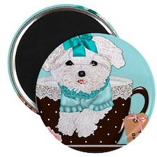 Teacup Baby Maltese Magnet