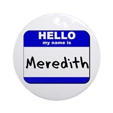 hello my name is meredith  Ornament (Round)