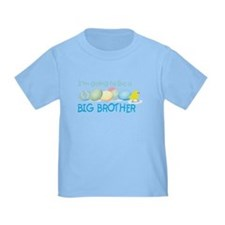 front only easter egg brother T
