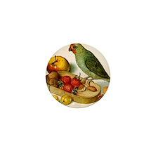 Pygmy parrot, Flegel Mini Button