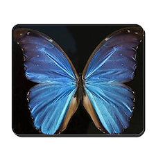 Elegant Blue Butterfly Mousepad