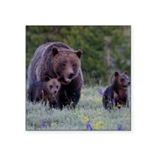 """MAMMA GRIZZLY and CUBS Square Sticker 3"""" x 3"""""""