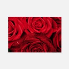 Red Roses Floral Rectangle Magnet