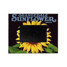Vintage Fruit Crate Label Art, Sunfl Picture Frame