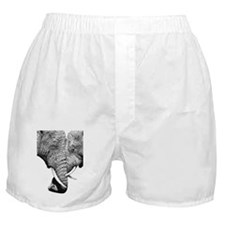 African Elephants 5x7 Rug Boxer Shorts