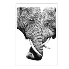 African Elephants 5x7 Rug Postcards (Package of 8)
