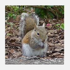 Gray Squirrel Tile Coaster