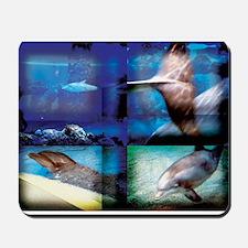Dolphin Art Mousepad