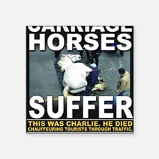 """This was Charlie Square Sticker 3"""" x 3"""""""