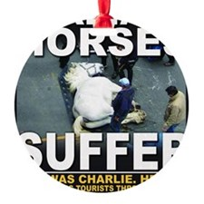 This was Charlie Ornament