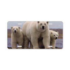 Polar Family Aluminum License Plate