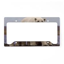 Polar Family License Plate Holder