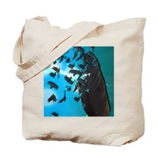 Crow Feather Blue Tote Bag