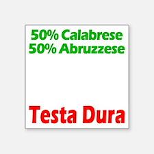 """Calabrese - Abruzzese Square Sticker 3"""" x 3"""""""