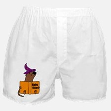 Otter Reading Magician Book  Boxer Shorts