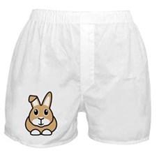 Brown Rabbit Design Boxer Shorts