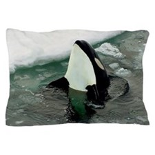 orcaice Pillow Case
