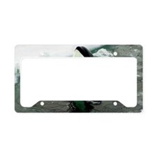 orcaice License Plate Holder
