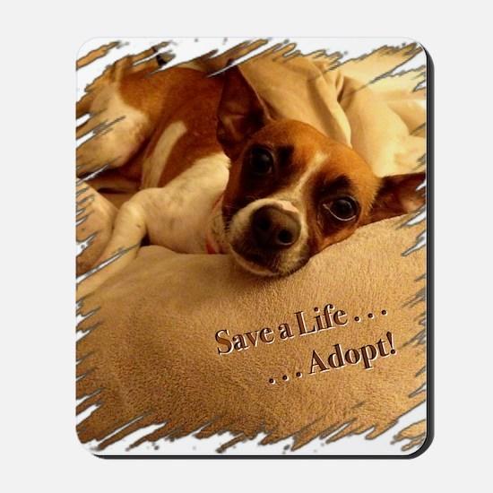 Save a Life . . . Adopt! Mousepad
