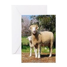 Horned Dorset and Lamb upright Greeting Card