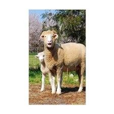 Horned Dorset and Lamb upright Decal