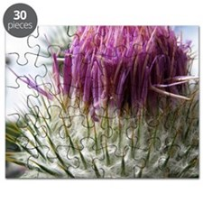 Edinburgh Thistle 2 Puzzle