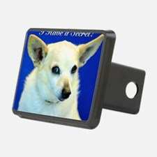I Have A Secret! Hitch Cover