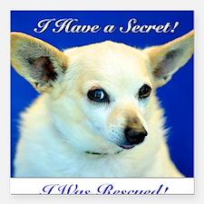 "I Have A Secret! Square Car Magnet 3"" x 3"""