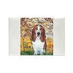 Monet's Spring & Basset Rectangle Magnet (10 pack)