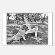 Missing You Golden Retrie Postcards (Package of 8)