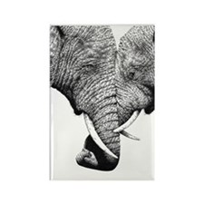 African Elephants iPad Mini Rectangle Magnet
