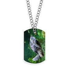green sea turtle Dog Tags
