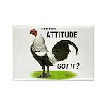 Got Attitude? Rectangle Magnet (100 pack)