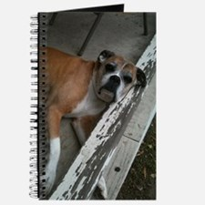 Old Boxer Journal