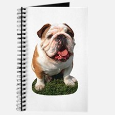 Bulldog Photo Journal
