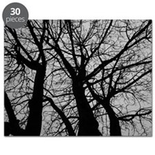 Maple Tree In Winter Fractal Pattern - Land Puzzle