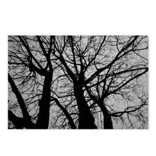 Maple Tree In Winter Frac Postcards (Package of 8)