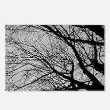 Landscape Shot Of An Old  Postcards (Package of 8)