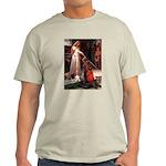 The Accolade & Basset Light T-Shirt