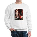 The Accolade & Basset Sweatshirt