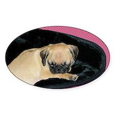 Adorable Sleeping Pug Puppy Decal