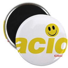 Acid Smiley Magnet