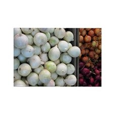 Fruit Stand: White Onions Rectangle Magnet