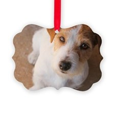 Russell Terrier Picture Ornament