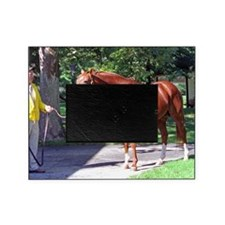 SECRETARIAT Picture Frame