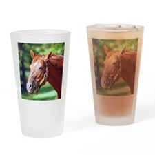 SECRETARIAT Drinking Glass