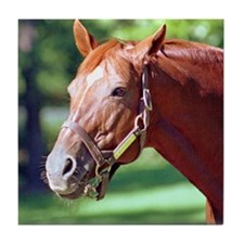 SECRETARIAT Tile Coaster