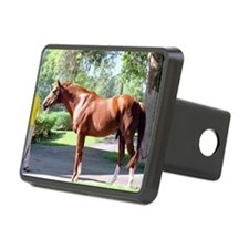 SECRETARIAT Hitch Cover
